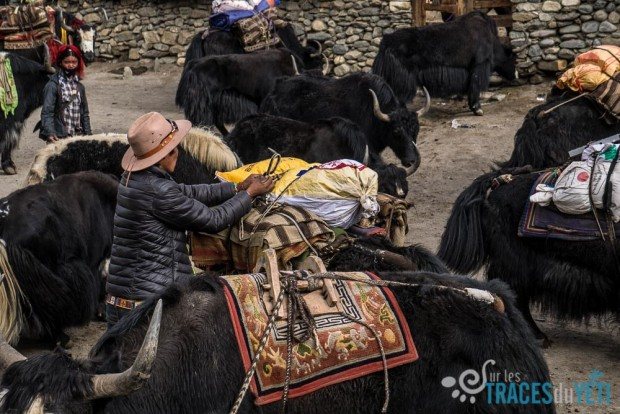 pop-b68/g-traversee.nepal.col.haut.dolpo.16.jpg